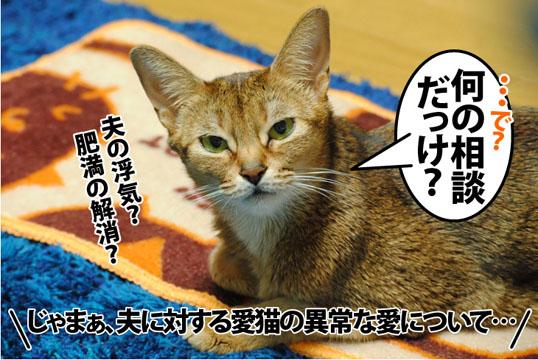 20120209_04.jpg