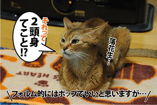 20120214_04.jpg