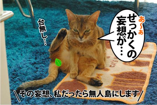 20120221_04.jpg
