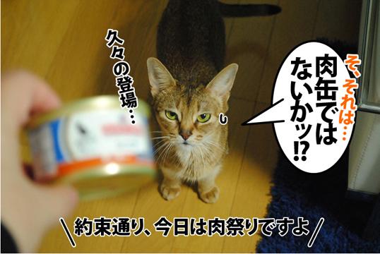 20120224_01.jpg