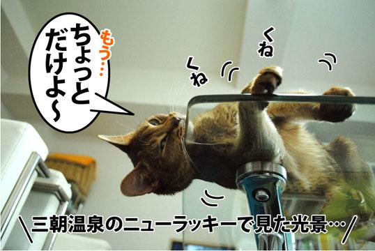 20120301_02.jpg