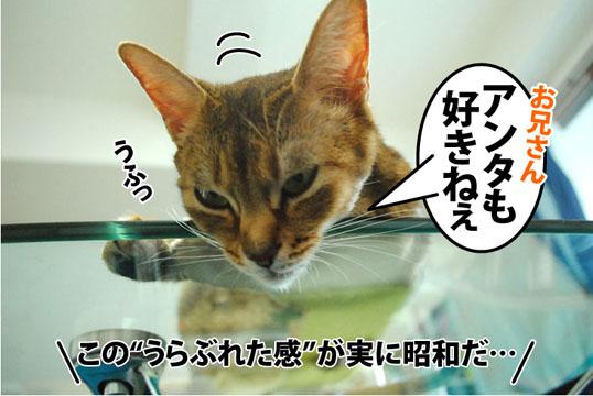 20120301_03.jpg