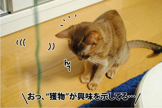 20120302_02.jpg