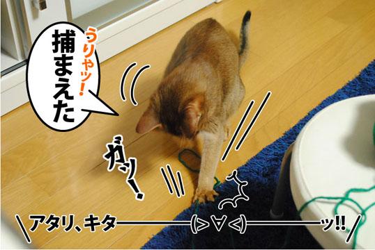 20120302_03.jpg
