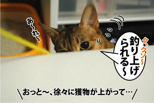 20120302_05.jpg