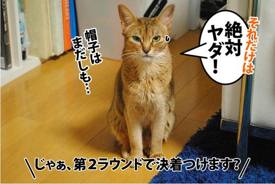 20120302_09.jpg