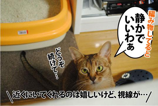 20120306_02.jpg