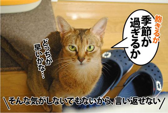 20120306_06.jpg