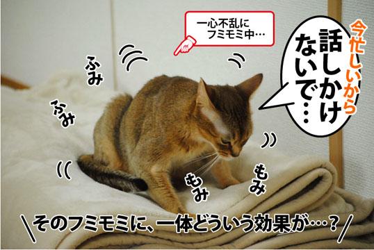 20120307_02.jpg
