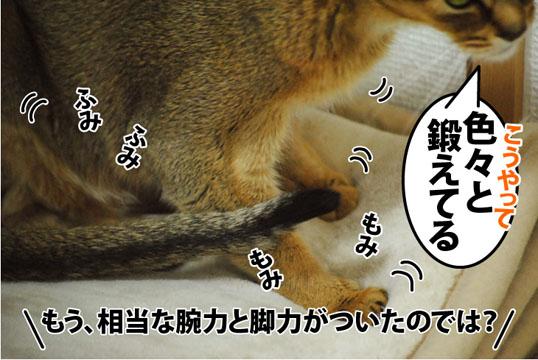 20120307_03.jpg