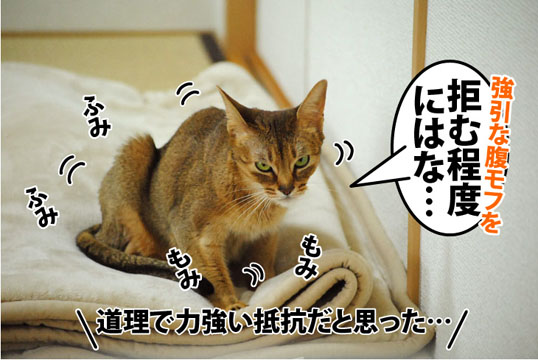 20120307_04.jpg