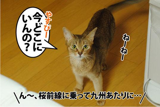 20120309_02.jpg