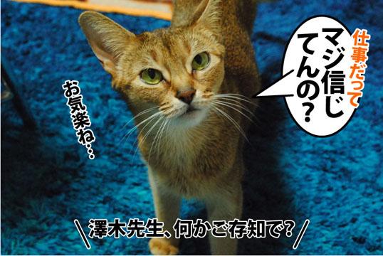 20120309_04.jpg
