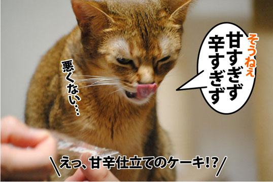 20120315_03.jpg