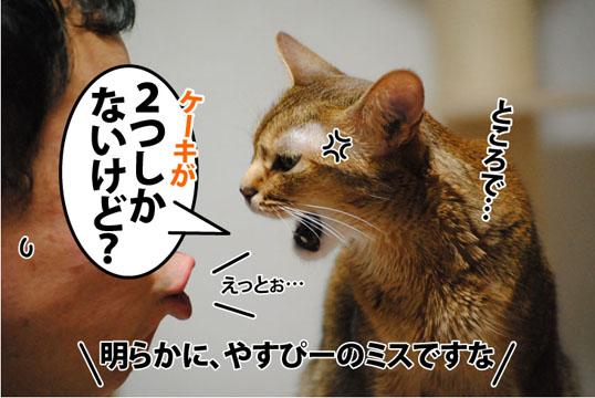 20120315_04.jpg