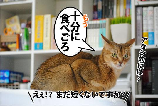 20120316_03.jpg