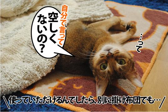 20120320_03.jpg