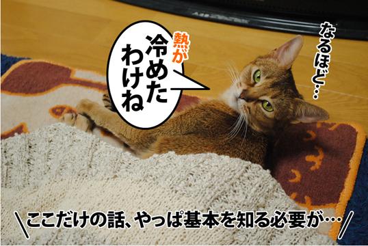 20120320_04.jpg