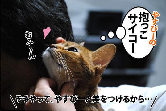 20120326_01.jpg