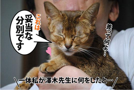 20120326_02.jpg