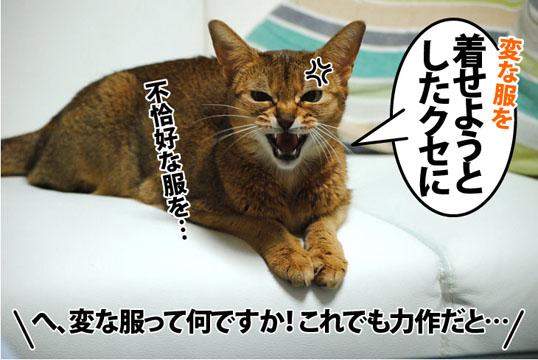 20120326_03.jpg