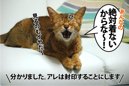 20120326_04.jpg