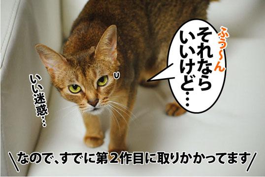 20120326_05.jpg