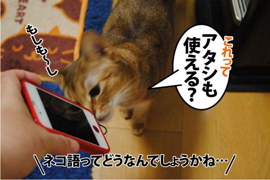 20120328_02.jpg