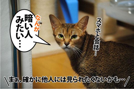 20120328_03.jpg