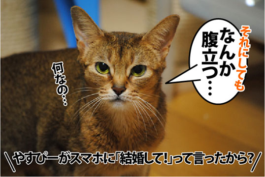 20120328_04.jpg