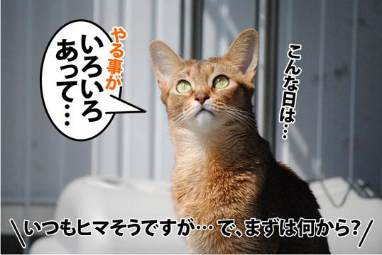 20120403_02.jpg
