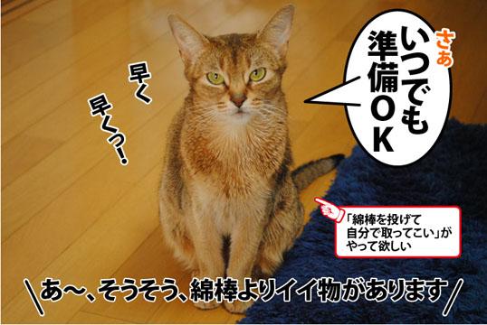 20120405_03.jpg