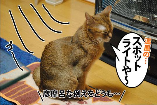 20120409_03.jpg
