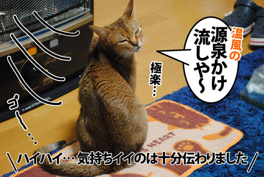 20120409_04.jpg