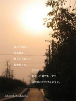 2007/10/30道