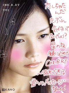 kashi11.jpg