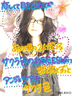 kashi12.jpg