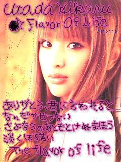 kashi8.jpg