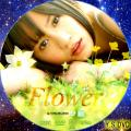flower-b DVD