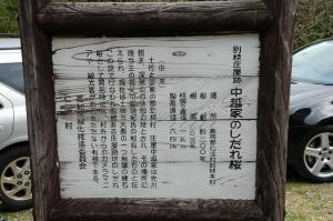 00392.jpg