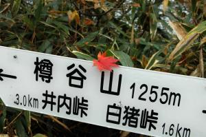 17DSC_82880001.jpg
