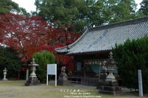10大洲神社2