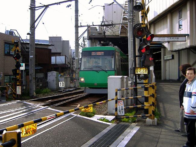 seta_sen2.jpg