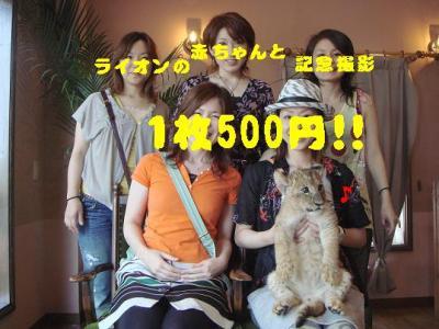 20070803102352.jpg