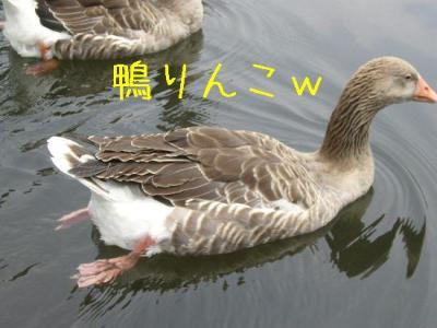 20070808141626.jpg
