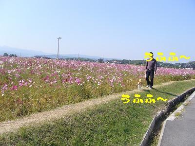 20071025110607.jpg
