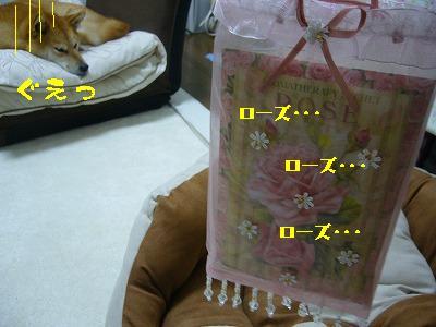 20071121173535.jpg