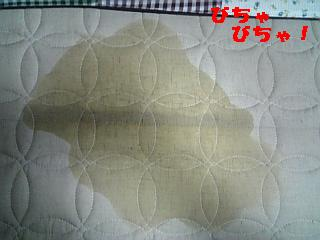 20070424215924.jpg