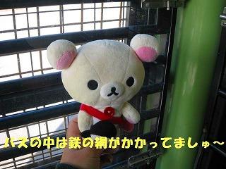korichan-blog1101.jpg