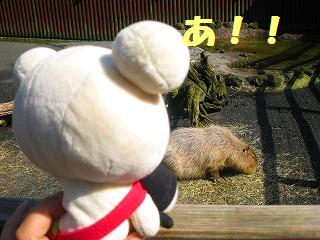 korichan-blog1127.jpg